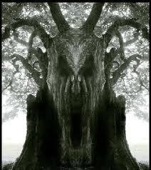 عن عائشة أنها قالت : لمروان بن الحكم سمعت رسول الله يقول لأبيك إنكم الشجرة الملعونة في القران