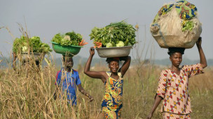 تعد جمهورية افريقيا الوسطى من أفقر البلدان في القارة الإفريقية