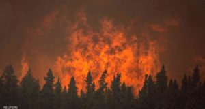 .الحرائق التهمت مساحات واسعة من الغابات