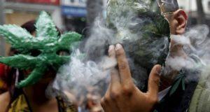 إنشاء 4 نواد لاستهلاك الماريخوانا في سويسرا