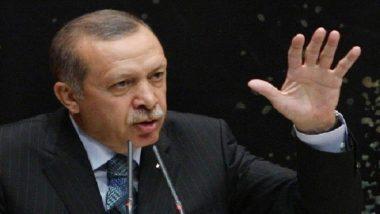 صحيفة: تركيا وقعت في الفخ الذي نصبته