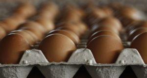 داعش يبيع البيض والدجاج في ليبيا