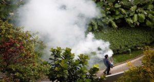 رش مبيدات حشرية في سنغافورة بعد تفشي فيروس زيكا