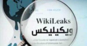 ويكيليكس يكشف المزيد من فضائح ساسة تركيا
