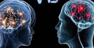 صورة العلماء يجدون الفرق بين دماغي الرجل والمرأة