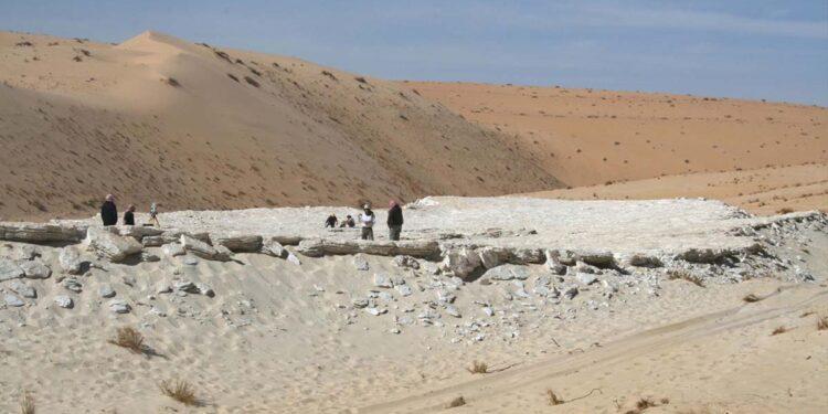 صورة عندما كانت جزيرة العرب خضراء رطبة.. اكتشاف آثار بشر مروا بها قبل 120 ألف عام