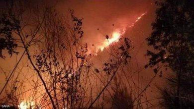 صورة قتلى وآلاف النازحين جراء حرائق في سوريا ولبنان وإسرائيل